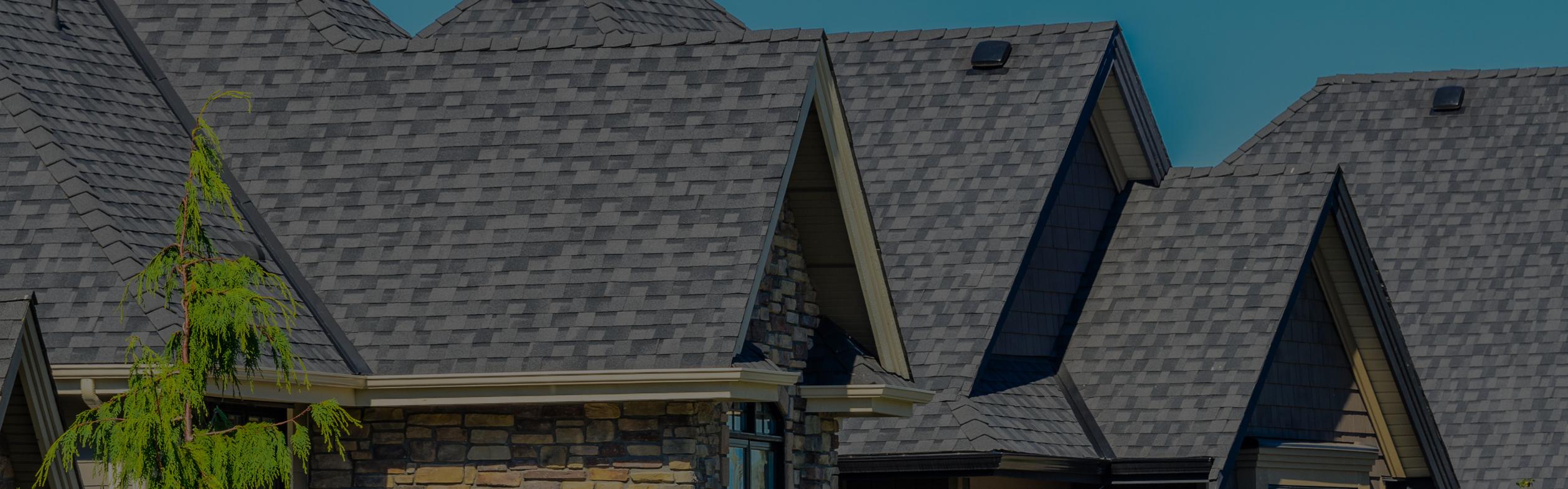 Reparation toiture levis